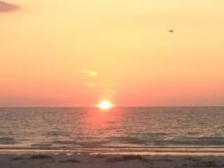 Myrtle Beach Prefix List